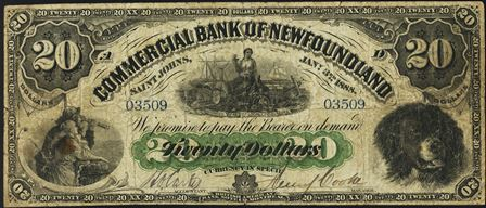 commercial NF 1888 20