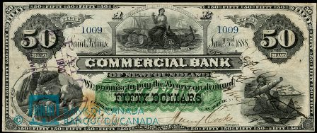 commercial NF 1888 50