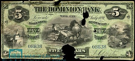 dominion bank 1891 5