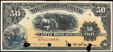 northern bank 1905 50